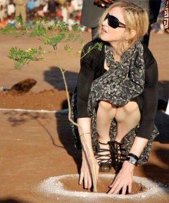מדונה שותלת עץ מורינגה מכונפת במטע אפריקאי